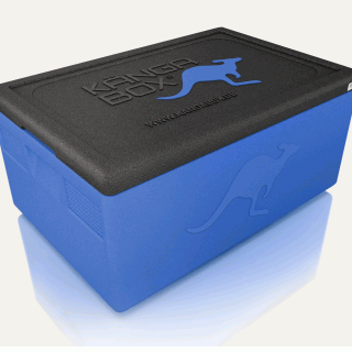 thermobox Expert GN azul
